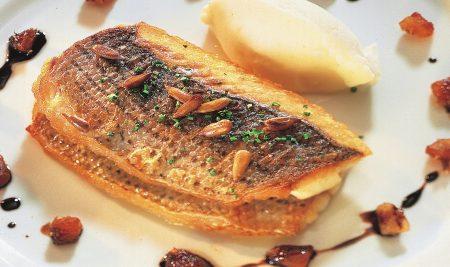 דג בס בוויניגרט תמרים